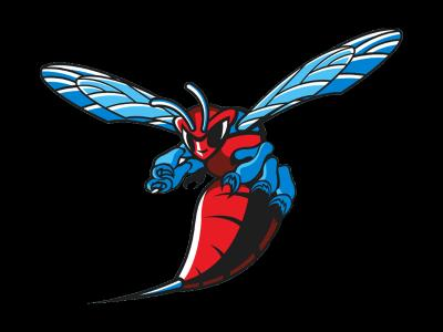 Delaware State University Track andField and Cross Country