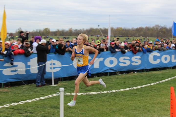 ihsa state cross country meet 2015 results nfl